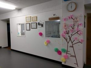 桜飾り東所沢スタジオ
